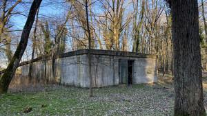 Un bunker allemand dans une fôret